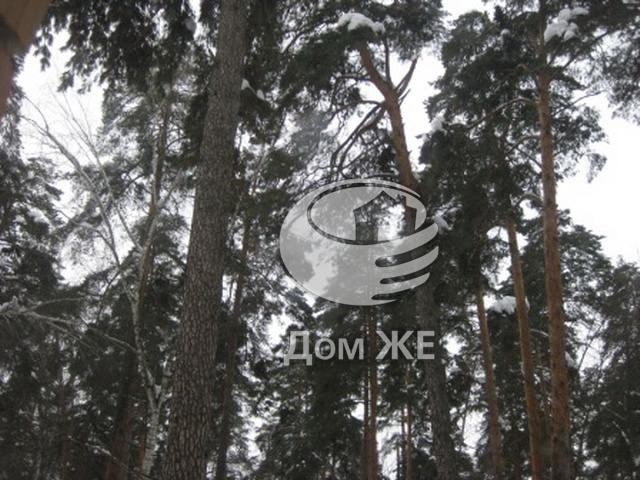 http://www.domge.ru/big_foto_1327437419_9