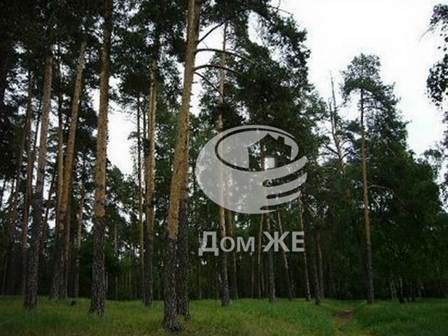http://www.domge.ru/big_foto_1327449289_2