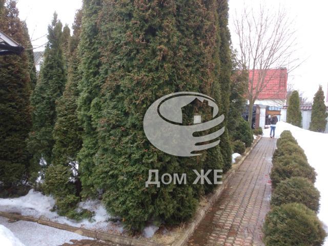 http://www.domge.ru/big_foto_1363184522_20